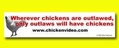Buy outlaw chicken bumper stickericker
